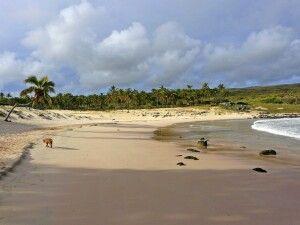 Anakena Beach im Norden der Osterinsel