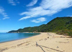 Strand im Abel-Tasman-Nationalpark