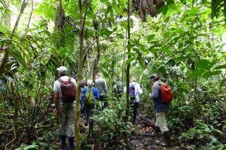 Entdeckungstour im Dschungel des Cuyabeno-Nationalparks