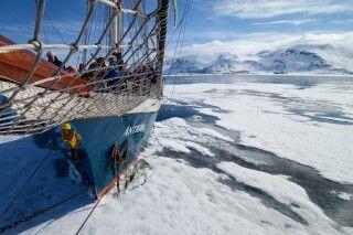 Die Antigua im Eis, Liefdefjord