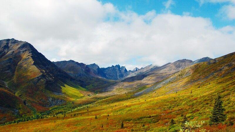 Der Yukon in satten Herbstfarben © Diamir