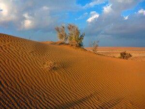 Wüste Karakum