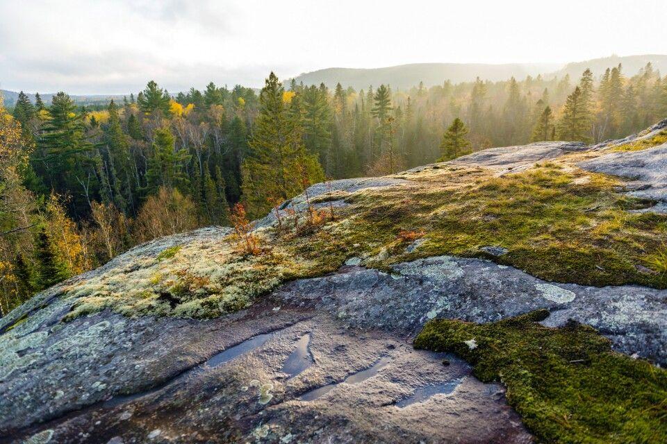 Von den Hügeln des Algonquin Provincial Parks hat man schöne Aussichten