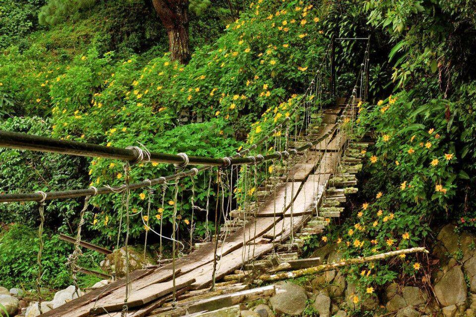 Hängebrücke El Valle