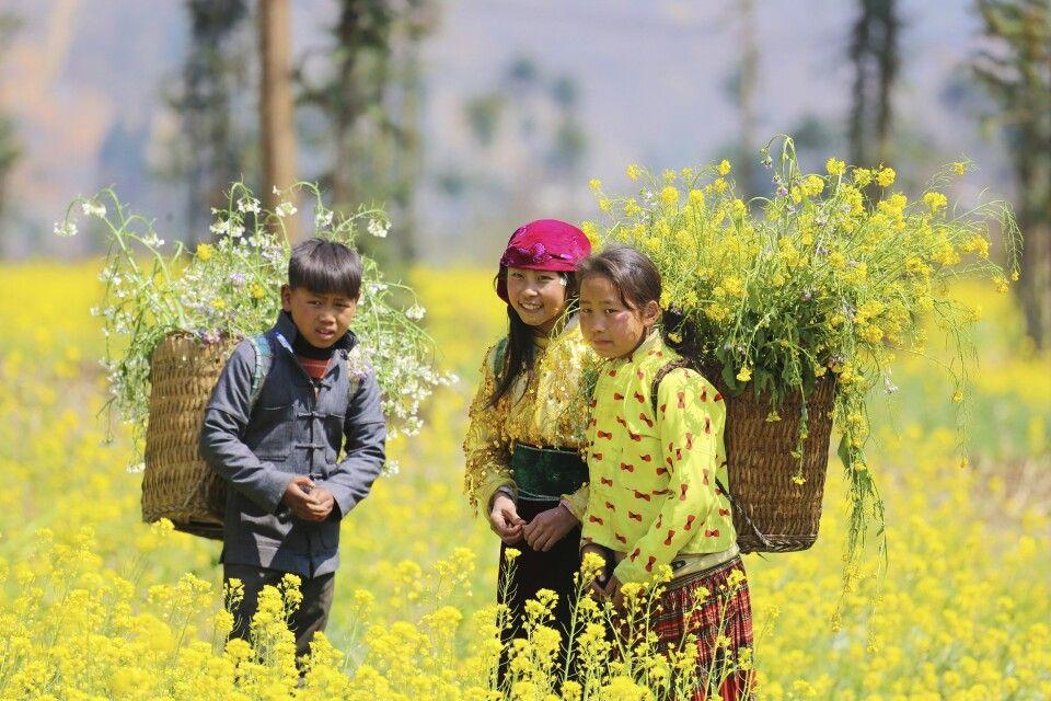 Kinder im blühenden Rapsfeld