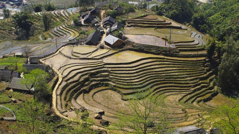 Terrassenfeldbau in Nordvietnam © Diamir