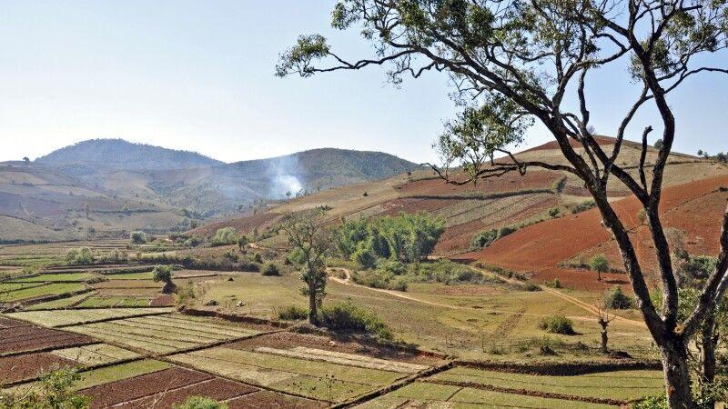 Landwirtschaft in den Hügeln rund um den Inle-See © Diamir