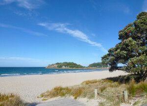 Strand bei Tauranga