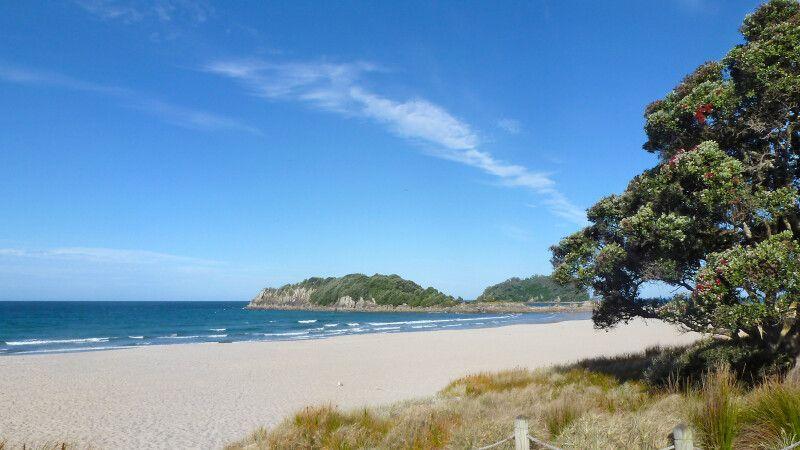 Strand bei Tauranga © Diamir