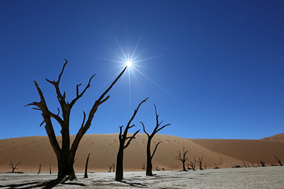 Namibia – 12 Tage Fotoreise mit Bernd Nill