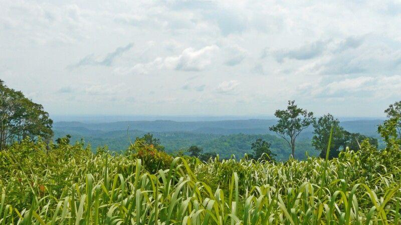 Endlose Weite in der Region Mondulkiri / Rattanakiri © Diamir