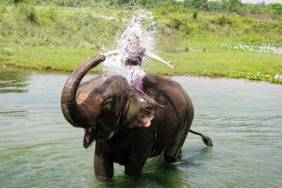 Bad mit Elefanten im Chitwan Nationalpark