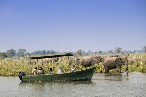 Bootsfahrt auf dem Shire-Fluss im Liwonde-Nationalpark