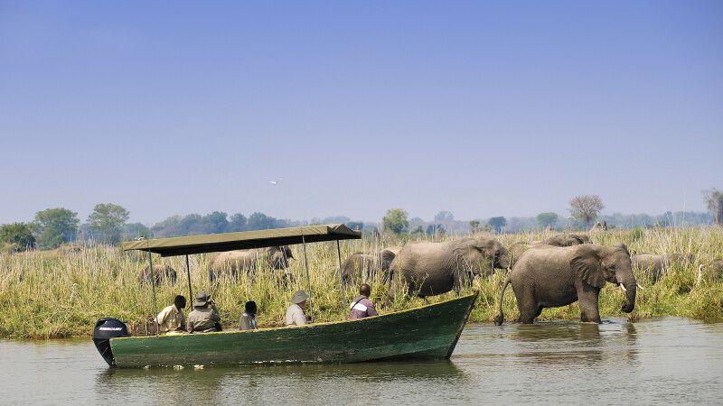 Bootsfahrt auf dem Shire-Fluss im Liwonde-Nationalpark © Diamir