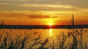 Sonnenuntergang über dem Chobe
