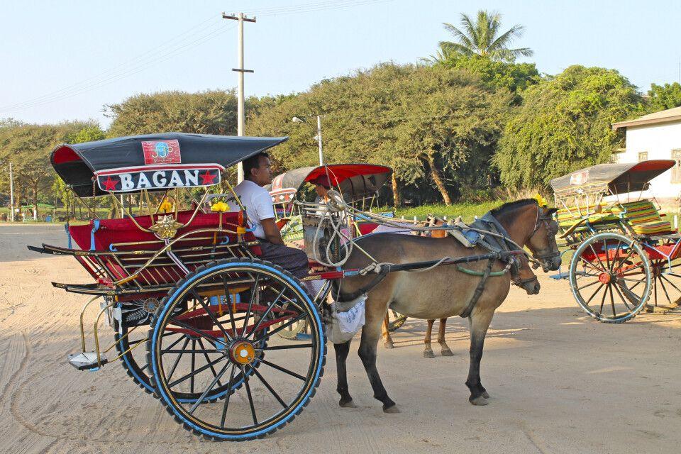 Pferdekutschen sind noch immer beliebte Transportmittel