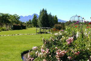 Weinland rund um Stellenbosch