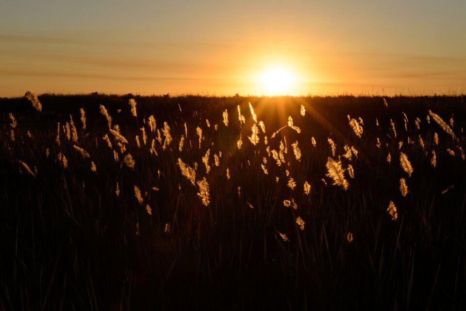 Sonnenaufgang im Camp von Lebala