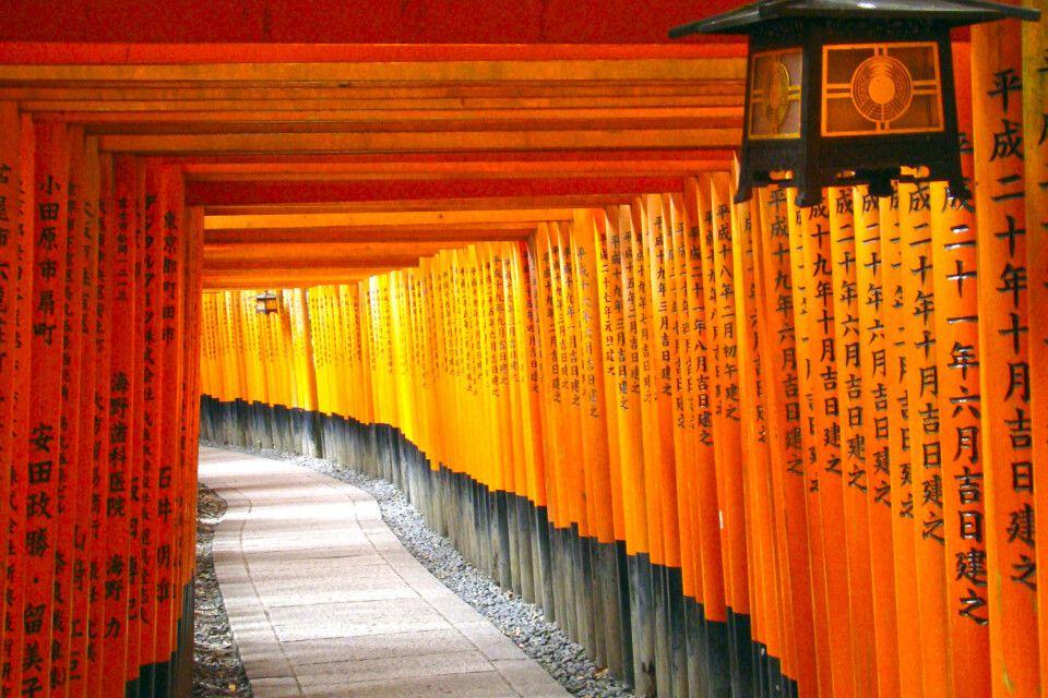 Tausende Torii am Fushimi-Inari-Schrein