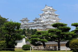 Weißer Reiher Burg in Himeji
