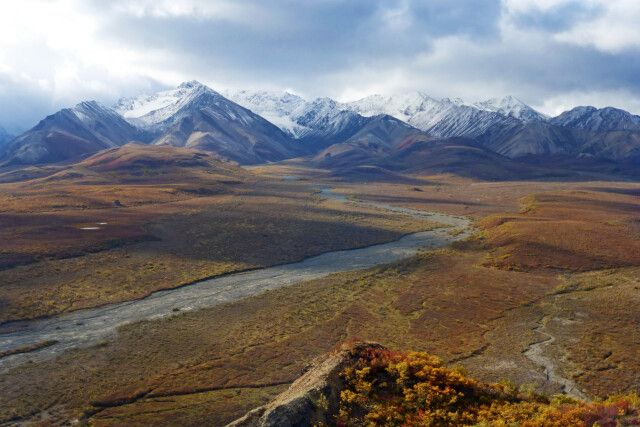 Polychrome Overlook, Denali-Nationalpark