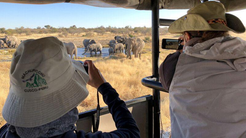 Elefanten am Wasserloch © Diamir