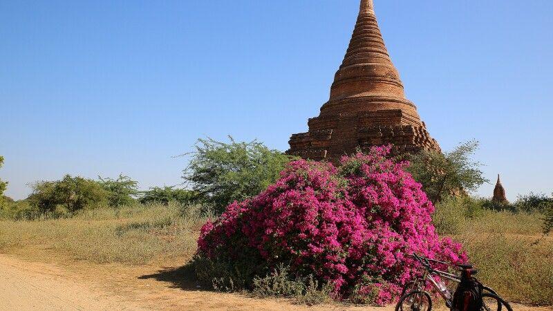 Mit dem Fahrrad durch die historische Königsstadt Bagan © Diamir