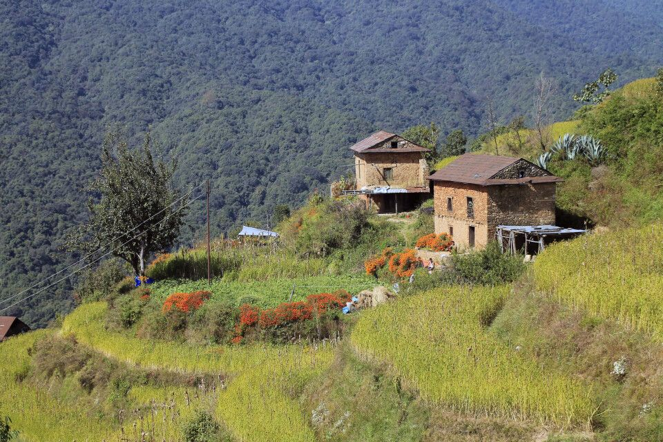 Bauernhof im Helambu