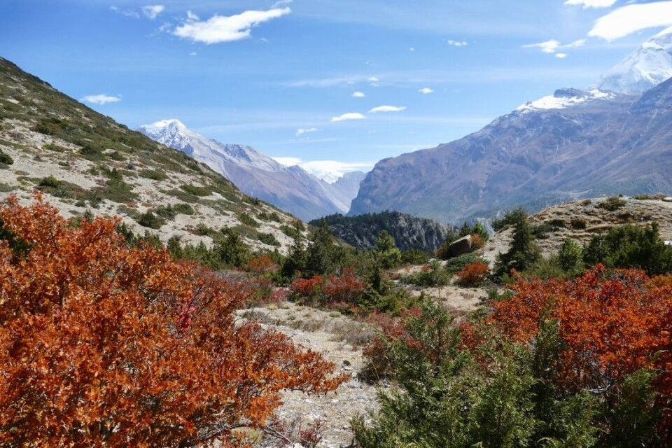 Trekking in imposanter Natur