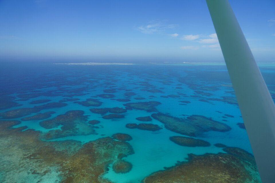 Die traumhafte Inselwelt der Abrolhos Islands entfaltet aus der Luft ihren vollen Glanz.