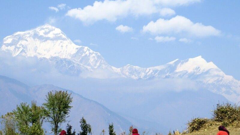 Dhaulagiri-Panorama in Shikha beim Aufstieg von Tatopani nach Ghorepani © Diamir